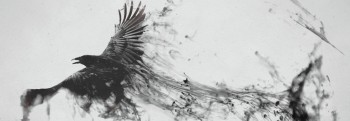 cropped-cropped-flying-raven-artwork-wallpaper